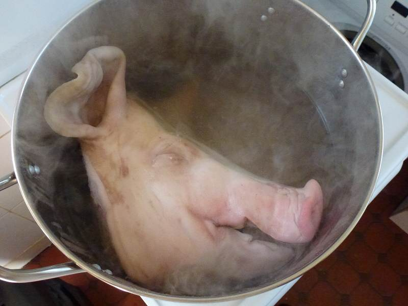 pig head in pot